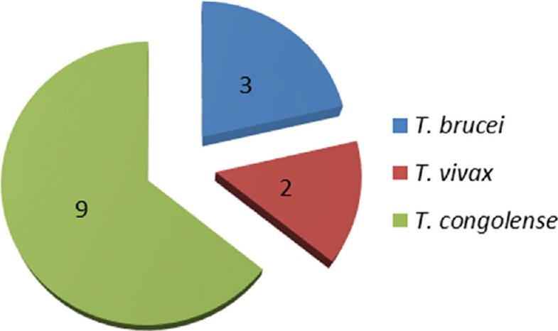 Figure 4: Trypanosome species infection in tsetse flies collected in Emene: 9 flies were infected with <i>Trypanosoma congolense</i>; 2 with <i>Trypanosoma vivax</i>, and 3 with <i>Trypanosoma brucei</i>